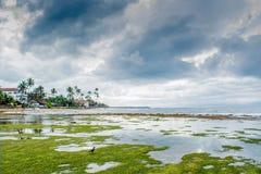Tropical beach under the cloudy sky Stock Photography