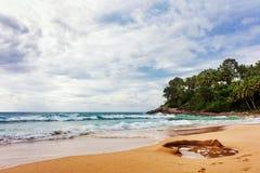 Tropical beach under gloomy sky Stock Image