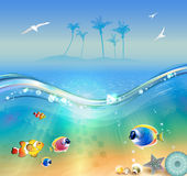 Tropical beach, underwater and wildlife Stock Image
