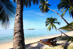Tropical Beach Vacation Stock Image