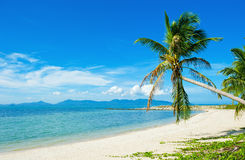 Tropical beach - vacation background Royalty Free Stock Photos