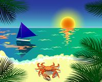 Tropical beach - vector illustration Stock Image
