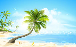 Tropical beach. Vector Royalty Free Stock Photos