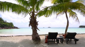 Tropical beach view with deckchairs, Seychelles. Sunny and tropical beach view with deckchairs, Seychelles stock footage