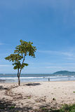 Tropical Beach. View over a beautiful pacific beach at Manuel Antonio, Costa Rica. National Reserve royalty free stock photo