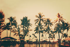 Tropical beach view. Palm trees, rest area. Royalty Free Stock Photo