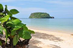 On a tropical beach. View from a tropical beach towards the sea. Photographed on Koh Libong, Trang province, Thailand stock images