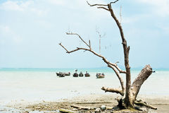 Tropical beach view in vintage style. Ocean landscape with Thai Royalty Free Stock Photography