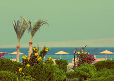 Tropical beach - vintage retro style Royalty Free Stock Images