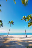 Tropical beach - Waikiki Beach Stock Photos
