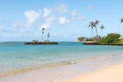 Tropical beach with warm water. Beach with palms on tropical resort Royalty Free Stock Photo