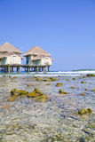 Tropical beach water bungalow Stock Photography