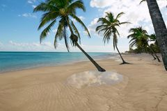 Tropical beach water reflection Caribbean Stock Image