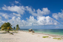Tropical beach whit coconut palms and fishermans boats Royalty Free Stock Photos