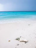 Tropical beach with white sand Stock Image