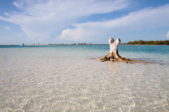 Tropical beach with white sand Stock Photography
