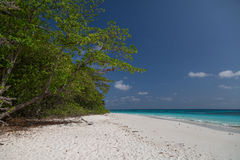 Tropical beach with white sand Stock Images