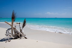 Tropical beach with white sand Royalty Free Stock Photography