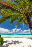 Tropical beach with white sand Royalty Free Stock Images