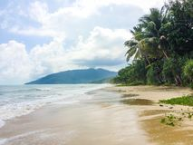 Tropical beach. Wild tropical beach fully deserted Royalty Free Stock Images