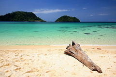 Tropical beach with wooden log and crystal Andaman sea Royalty Free Stock Photos