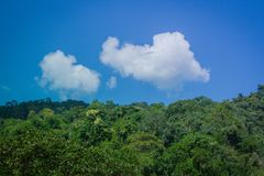 Tropical beautiful landscape view of misty rainforest mountain in cloudy day with blue sky in the background. Stock Images