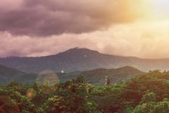 Tropical beautiful landscape view of misty rainforest mountain. stock images