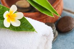 Tropical beautiful natural flower with spa objects stock images