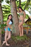 Tropical Beauty. Two pretty Asian ladies posing with a smile near a coconut tree on the beach royalty free stock photos