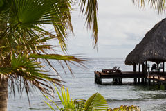 Tropical Belize Royalty Free Stock Images