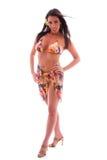 Tropical bikini brunette. Stock Image
