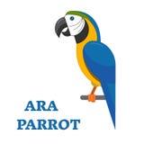 Tropical Bird Ara Parrot Royalty Free Stock Images