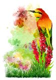 Tropical bird on flowers on the background of multicolored paint splashes. royalty free stock photo