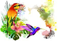 Tropical bird with flowers. Royalty Free Stock Photos