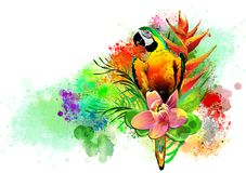 Tropical bird with flowers. Stock Image