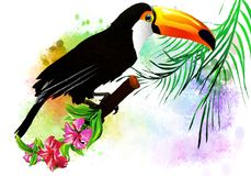 Tropical bird with flowers. Stock Photo