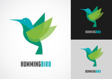 Tropical bird - humming vector icon Stock Images