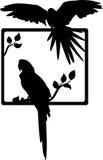 Tropical bird silhouette Stock Image