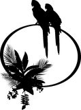 Tropical bird silhouette Stock Images