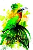 Tropical bird on a watercolor background. Stock Photos