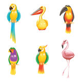 Tropical birds. Set of icons with tropical birds Royalty Free Stock Photo