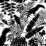 Tropical birds, butterflies and palm leaves silhouette seamless Royalty Free Stock Images