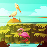 Tropical Birds Horizantal Retro Banners Set Royalty Free Stock Images