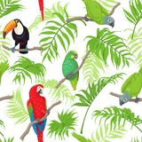 Tropical Birds and Leaves Pattern. Seamless pattern with tropical birds and palm fronds on white background. Colorful parrots and toucan sitting on branches Royalty Free Stock Image