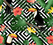 Tropical birds, orchids and palm leaves seamless background. Tropical birds, orchids and palm leaves seamless geometric background. Vector Stock Photos