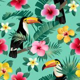 Tropical birds and palm leaves seamless background. Vector. Royalty Free Stock Photos