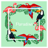 Tropical birds print design with palm leaves Stock Photography