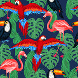 Tropical birds seamless pattern with palm leaves Royalty Free Stock Photo