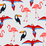 Tropical birds seamless pattern with parrots Royalty Free Stock Images