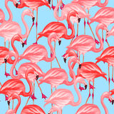 Tropical birds seamless pattern with pink Stock Photo